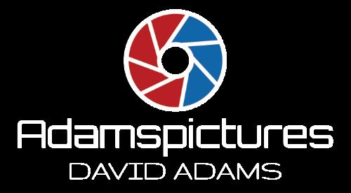 Adamspictures